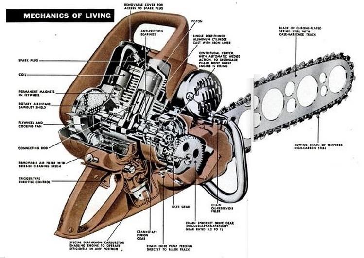 esquema-motosserras-historia
